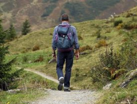wanderer-