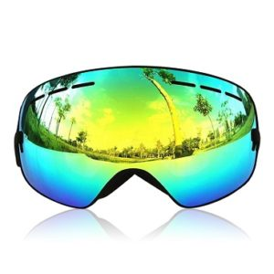 Snowboardbrille_Ganzton